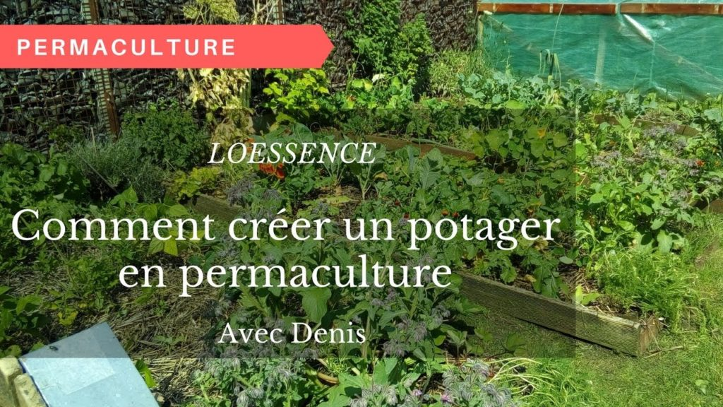 comment cr er un potager en permaculture quand on a moins d 39 une heure par jour. Black Bedroom Furniture Sets. Home Design Ideas