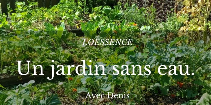 PODCAST De Denis Le Permaculteur - Un Jardin Sans Eau