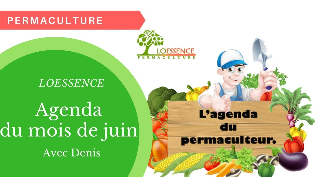 Vlog - Agenda Du Permaculteur Du Mois De Juin.