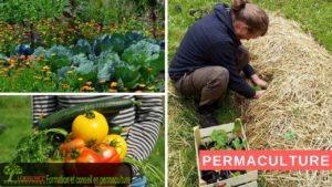 Association Loessence, formation et conseil en permaculture
