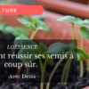 Comment réussir ses semis à coup sûr