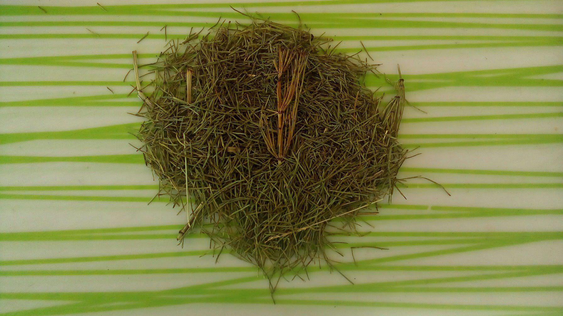 Prêle (plante Séchée) 120g