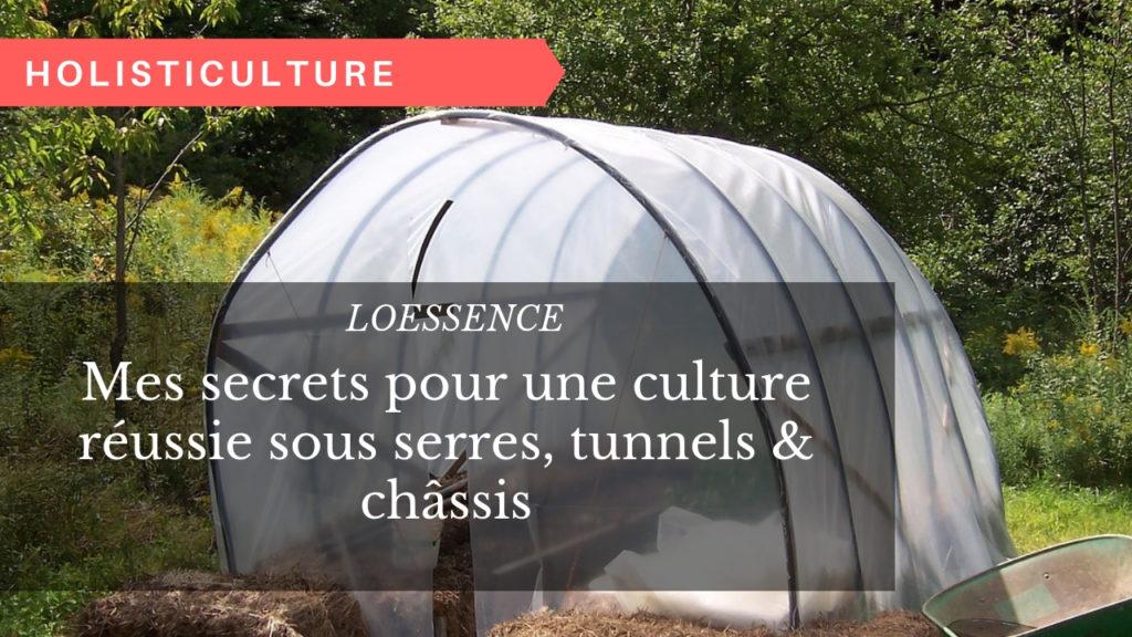 Mes secrets pour une culture réussie sous serres, tunnels & châssis