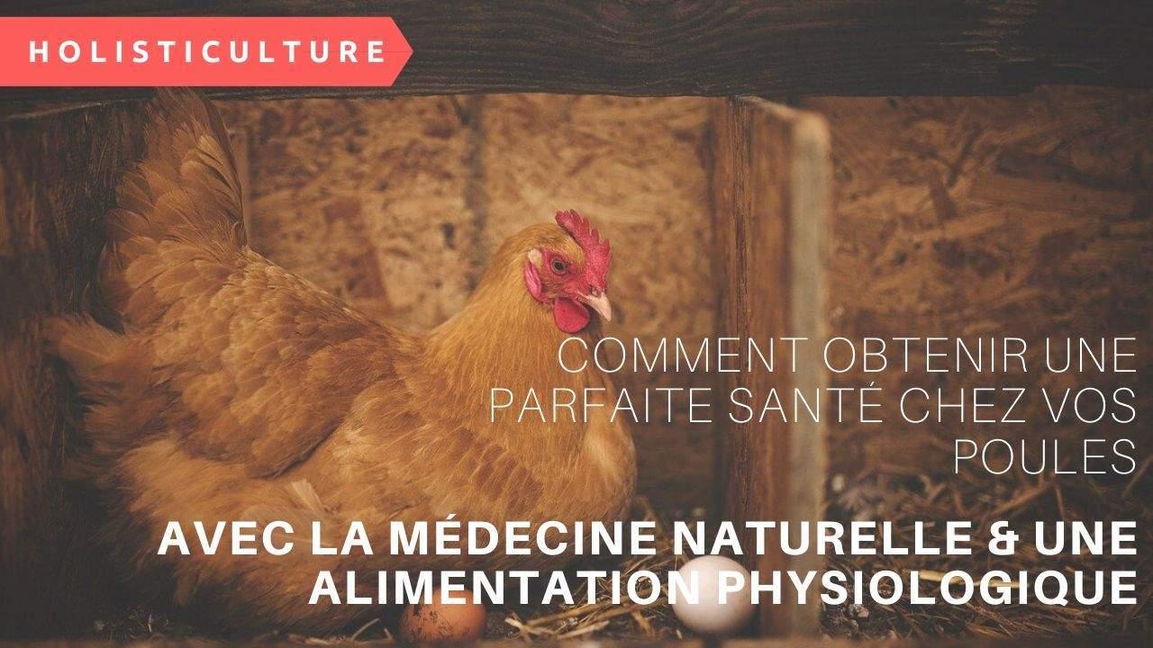 Comment Obtenir Une Parfaite Santé Chez Vos Poules Avec La Médecine Naturelle & Une Alimentation Physiologique