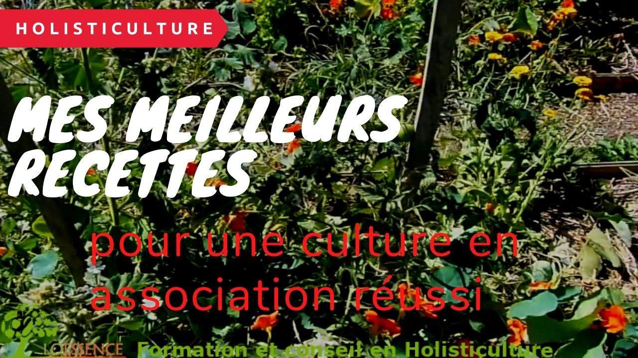 Mes Meilleurs Recettes & Secrets Pour Une Culture En Association Réussie Au Potager