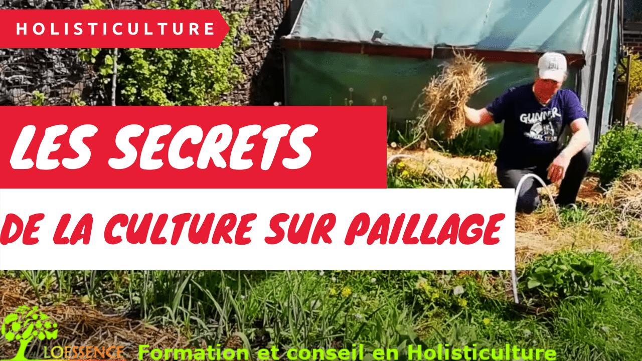 Les Secrets De La Culture Sur Paillage