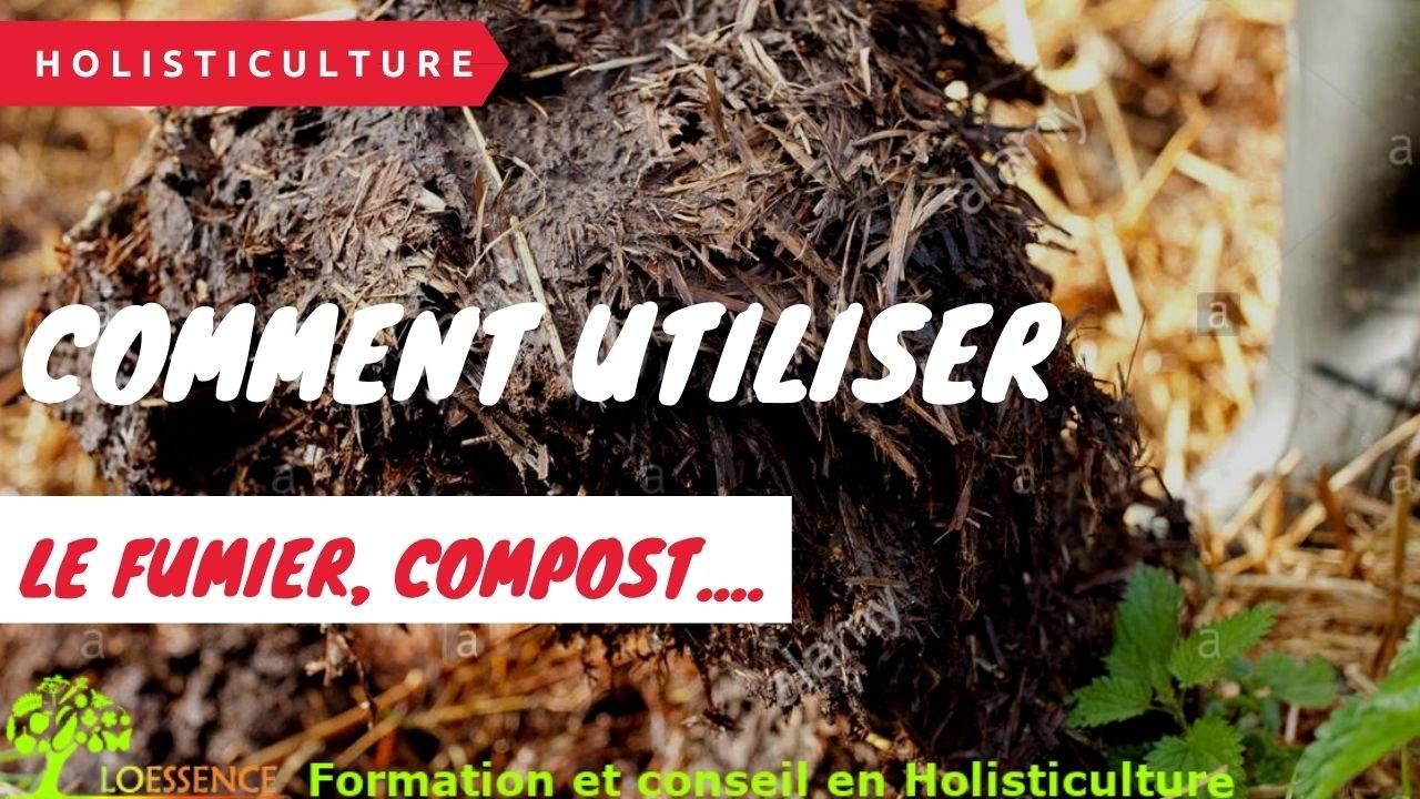 Comment Utiliser Le Fumier, Compost, Et Humus Pour Des Cultures Productives Sans Attirer Les Maladies Et Autres Ravageurs