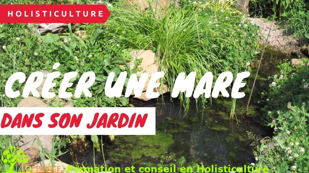 Créer Une Mare Naturelle En 1 Week-end Dans Son Jardin